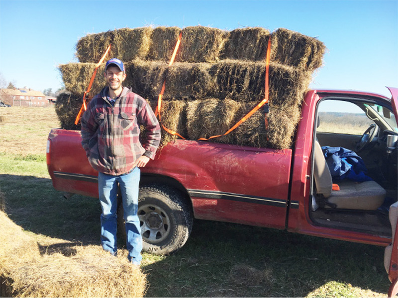 To keep soil covered we use far more mulch hay than we produce. Brent has run our pick-up service, bringing us hay from all over Central Massachusetts.